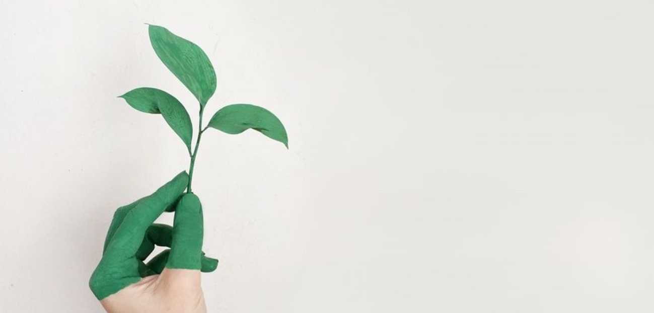 Tips for practicing sustainability in clinics and offices