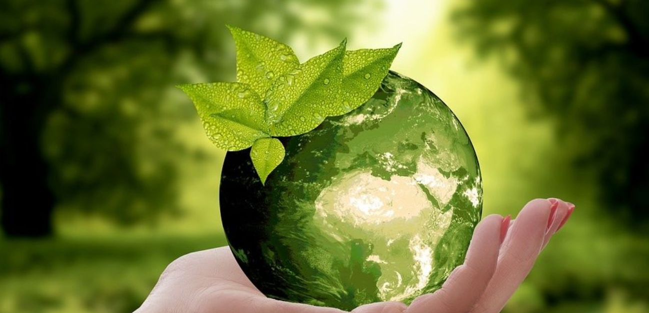 Economy and sustainability when printing reports